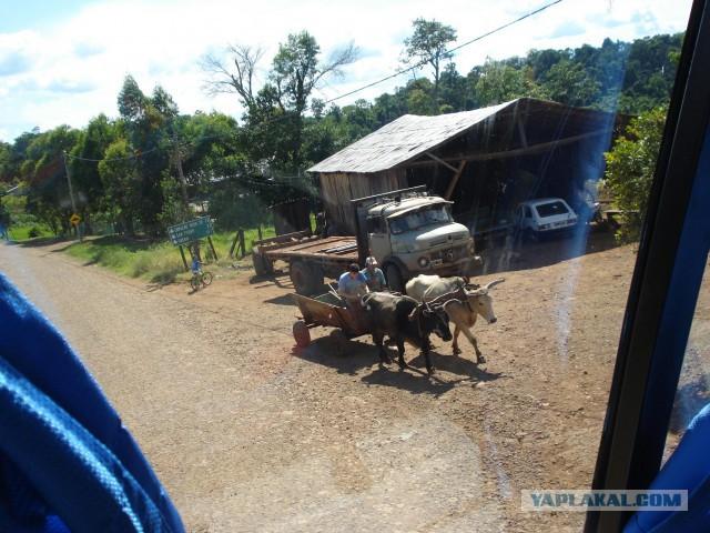 Моя прогулка по провинции Misiones, Аргентина. Джунгли и еще кое-что интересное