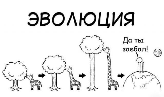 Скорость эволюции