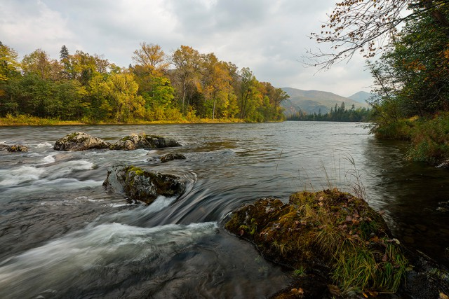 Таёжная река