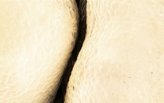 Еда под электронным микроскопом