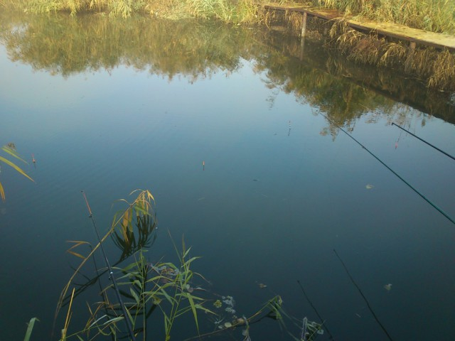 днепробугский рыбхоз рыбалка