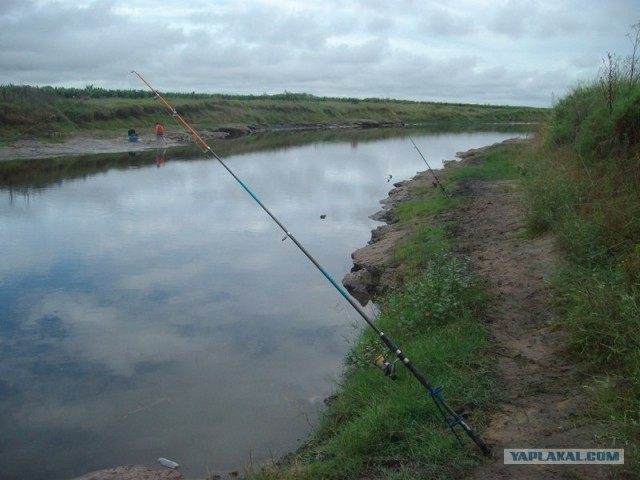 Обычная рыбалка