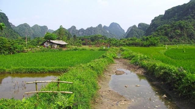 Бюджетно по Вьетнаму