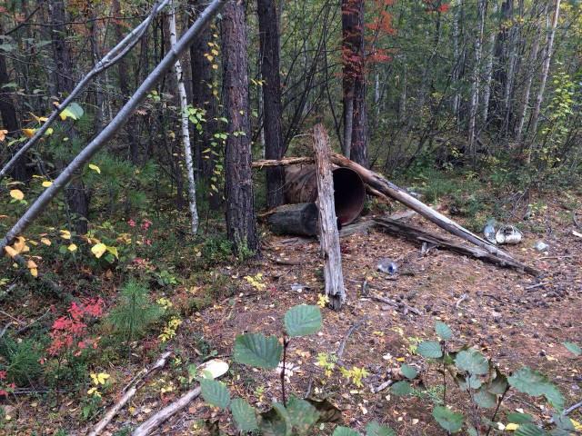 В Иркутске погиб попавший в медвежью ловушку рыбак