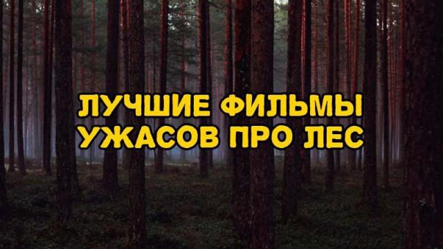 Подборка фильмов ужасов, действия которых происходит в лесу