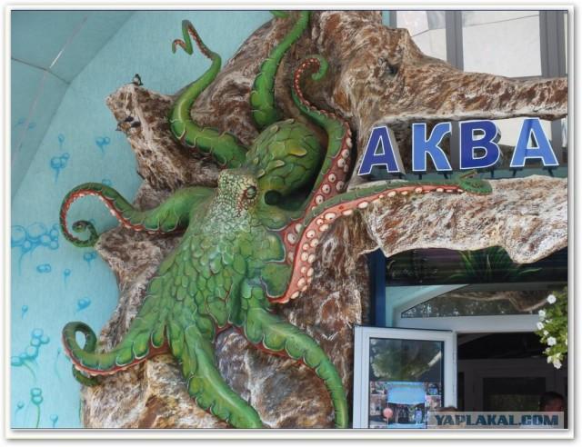 Непутёвые заметки. Поездка на Чёрное море