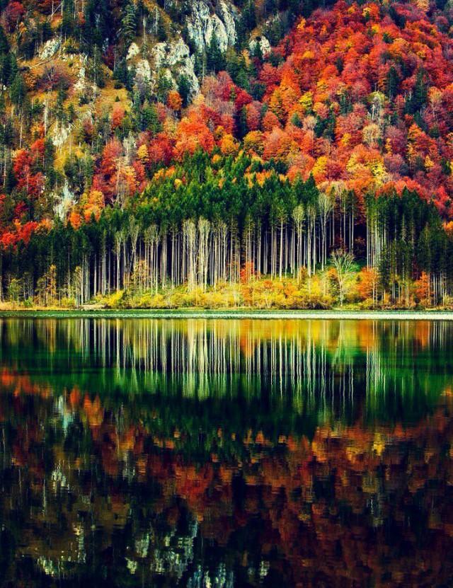 Необыкновенные и просто обыкновенные фото - Страница 15 12017746