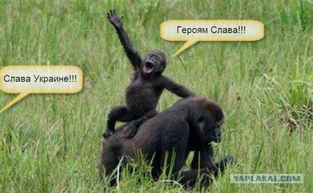 """В Одессу прибыли военные из Перевального, а в Николаев - из Бельбека: """"Мы удивлены тем, насколько тепло нас встретили"""" - Цензор.НЕТ 9102"""