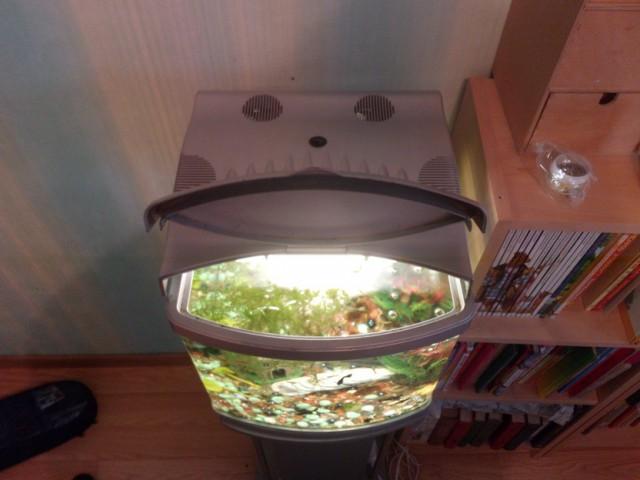 Отдам аквариум.Мск.