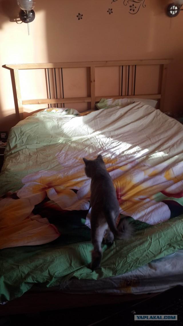 Продам кровать IKea