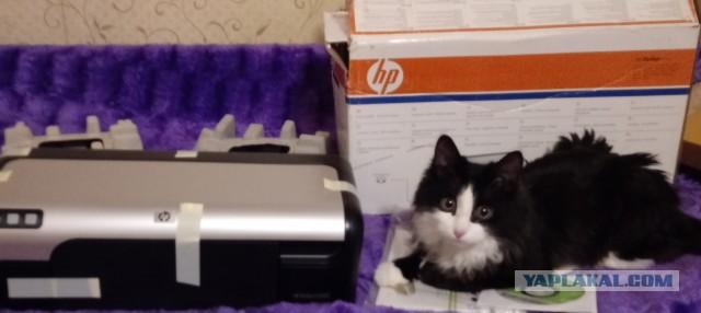 Отдам принтер даром