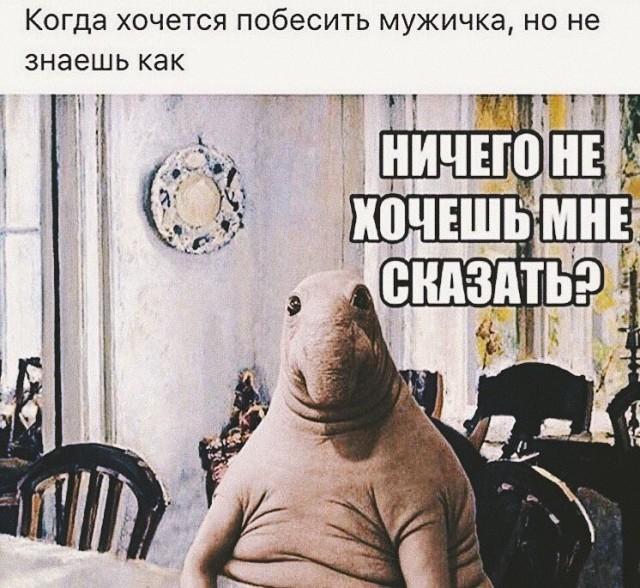 http://s00.yaplakal.com/pics/pics_preview/6/5/5/10059556.jpg