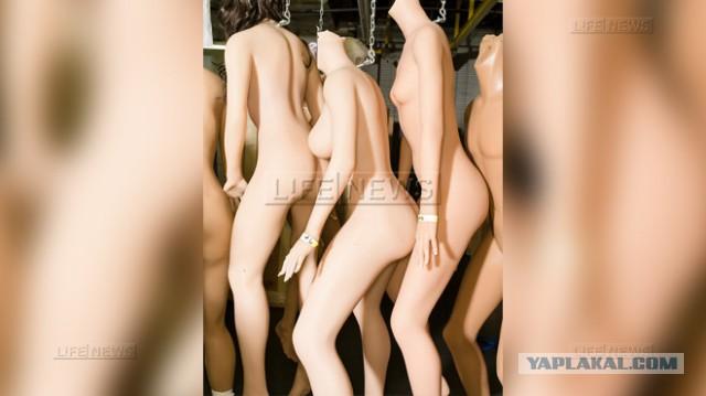 Самые дорогие куклы для секса 27 фото  текст