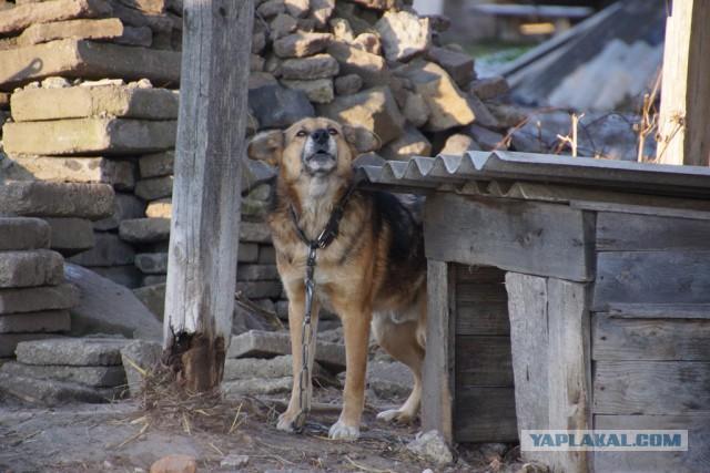 Как я съездил на Западную Украину (НГ 2016)
