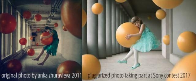 Российский фотограф обвинила финалиста Sony World Photography Awards в плагиате