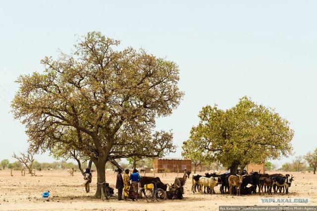 Путевые заметки. Буркина-Фасо