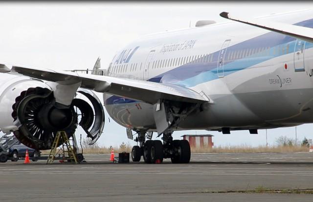 Стала известна предварительная причина отказа двигателя японского самолёта, совершившего экстренную посадку в нашем аэропорту