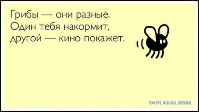 http://s00.yaplakal.com/pics/pics_preview/6/9/8/6548896.jpg