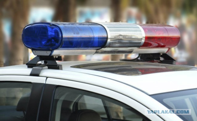 Жительница Тобольска украла из магазина фаллоимитатор