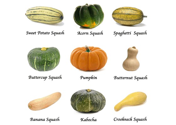 how to tell if a pumpkin is ripe australia