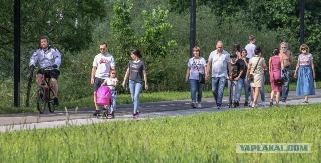 """До трети мужчин в России растят чужих детей и не знают об этом.Некоторые женщины сами """"заблуждаются""""по поводу отцовства ребёнка."""
