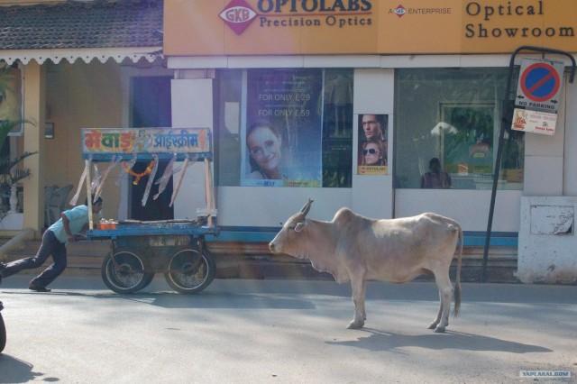 Сказочная Индия