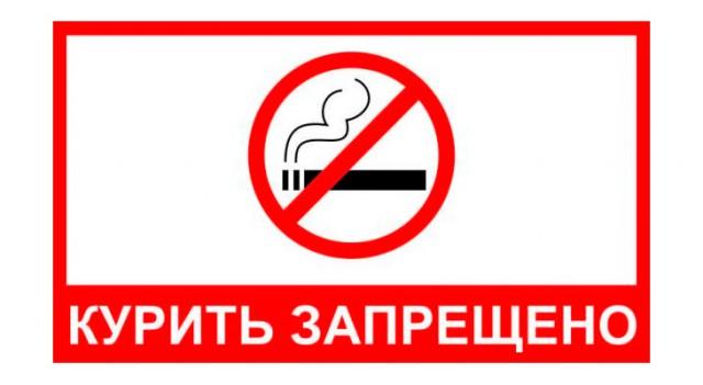Минздрав предложил очистить праздничные улицы от курящих