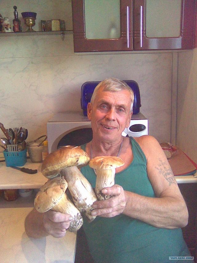 Грибы-грибочки: удачная охота
