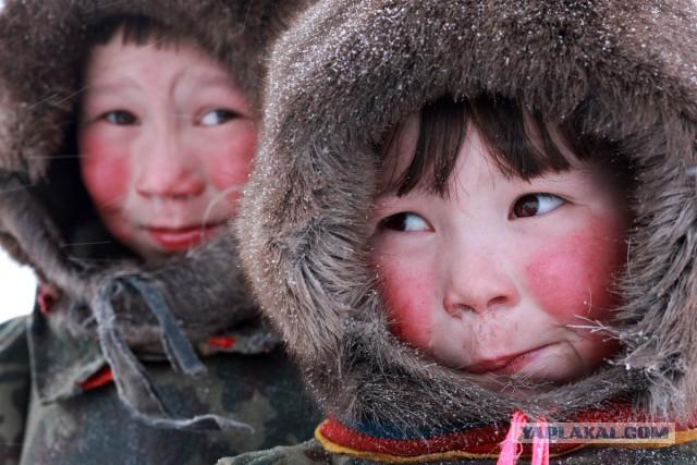 Дети Севера