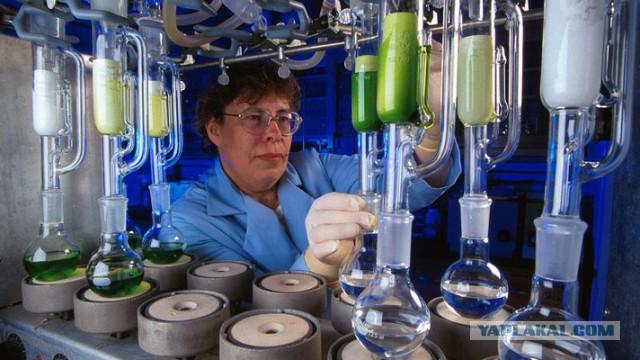 Украинские ученые заявили о создании лекарства от рака.