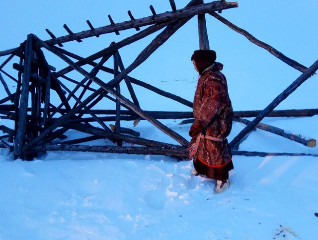В ЯНАО оленевода раздавила геодезическая вышка, которую он хотел срубить на дрова