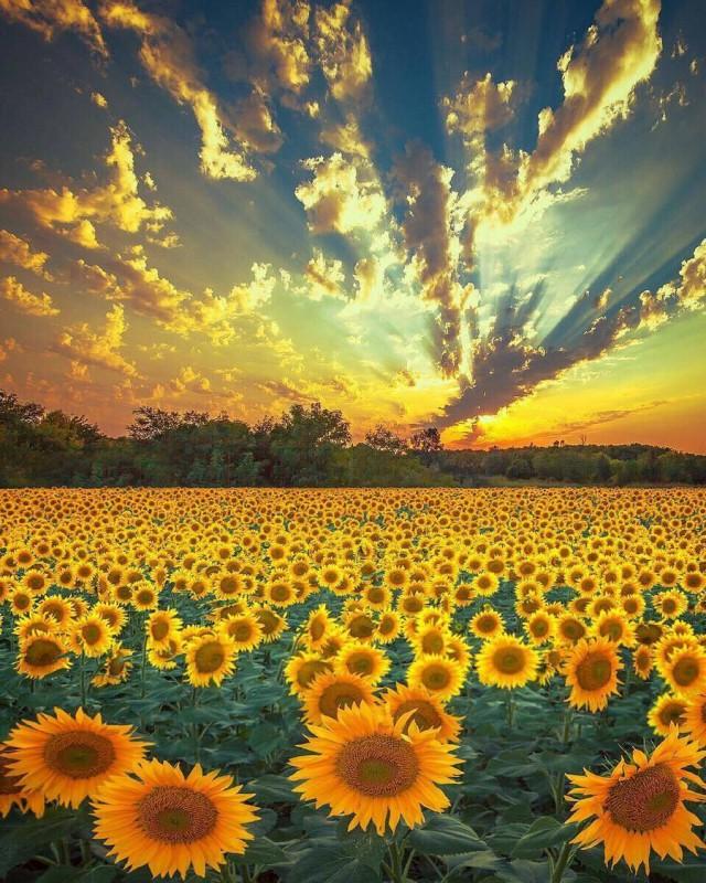 Необыкновенные и просто обыкновенные фото - Страница 8 11838557
