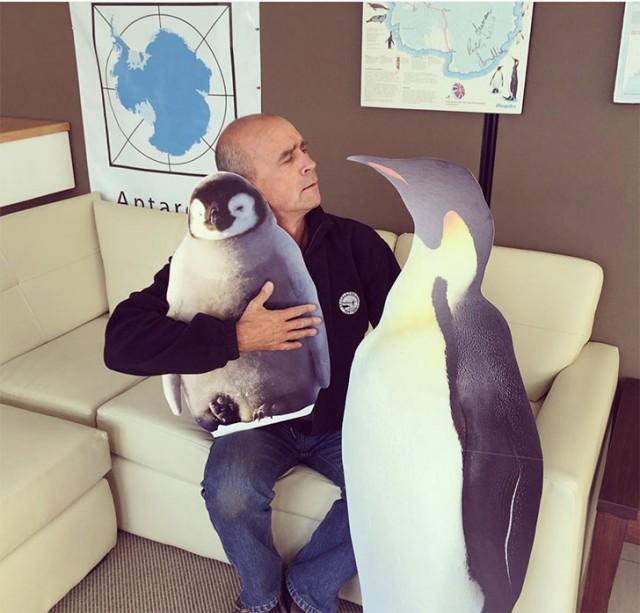 Отдать жизнь за мечту: путешественник не смог пересечь Антарктиду в одиночку
