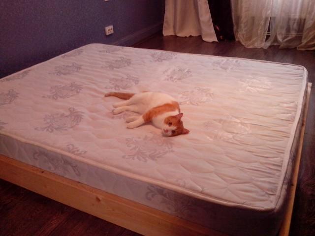 Как я запилил кровать