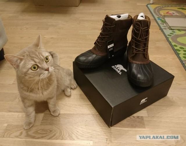 Продаю мужские ботинки Sorel. Москва