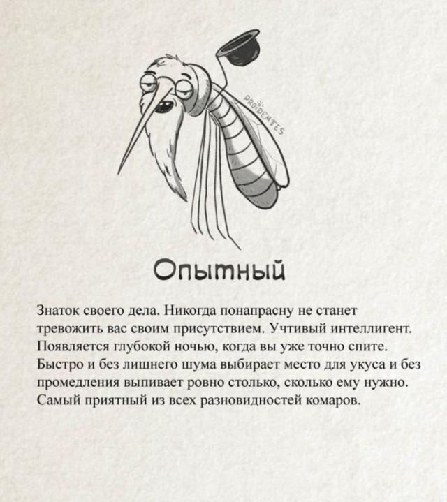 Точная классификация комаров!