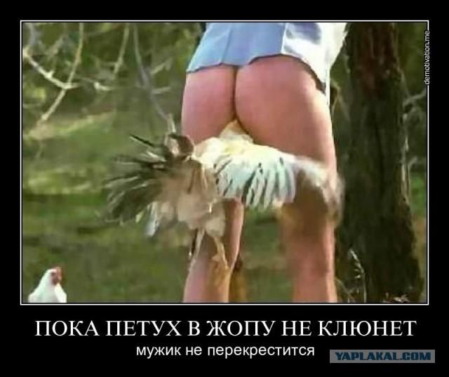 porno-s-sosedkoy-nizkoy