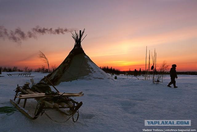 Отпуск в Сибири