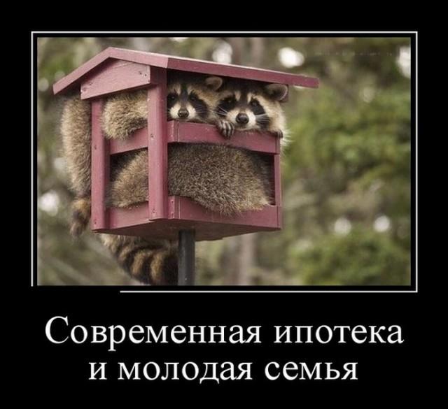 http://s00.yaplakal.com/pics/pics_preview/7/7/5/7654577.jpg