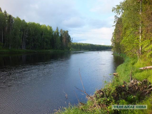 Карелия. Сплав по реке Шуя.