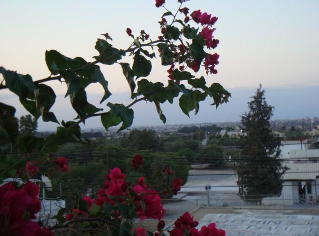 Мой Кипр
