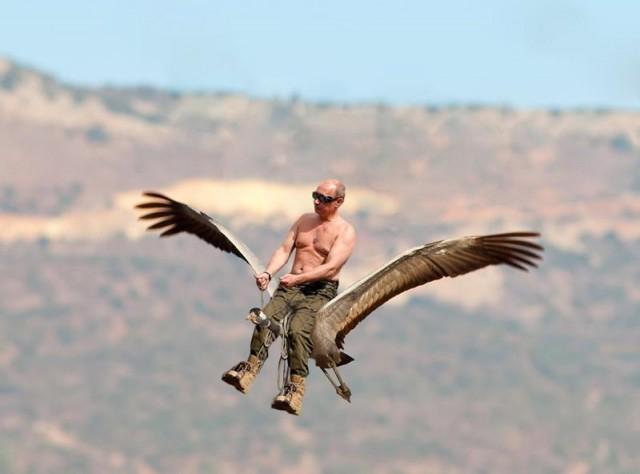 Путин с клювом в халате возглавил журавлиный клин