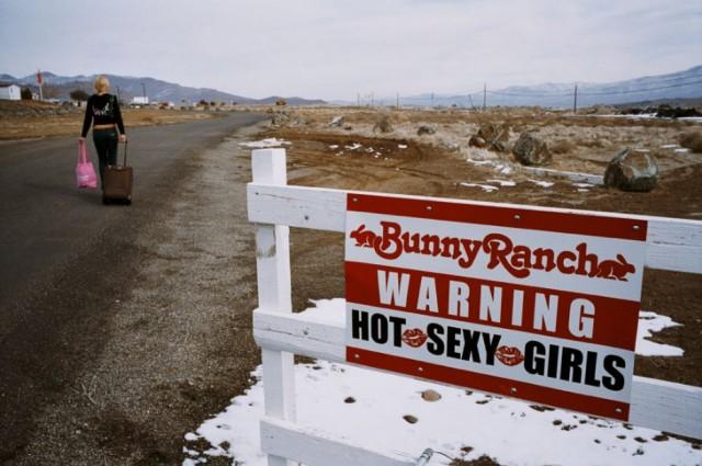 """""""Moonlite BunnyRanch"""" - публичный дом по лицензии"""