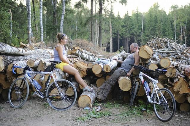Народ встал на защиту Химкинского леса