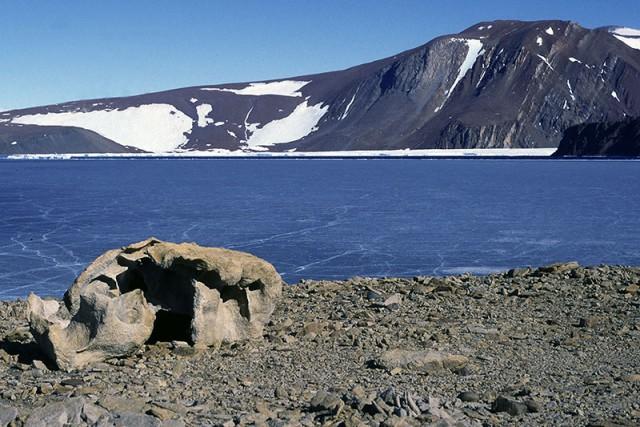 Турбаза глубокое озеро казань - 5