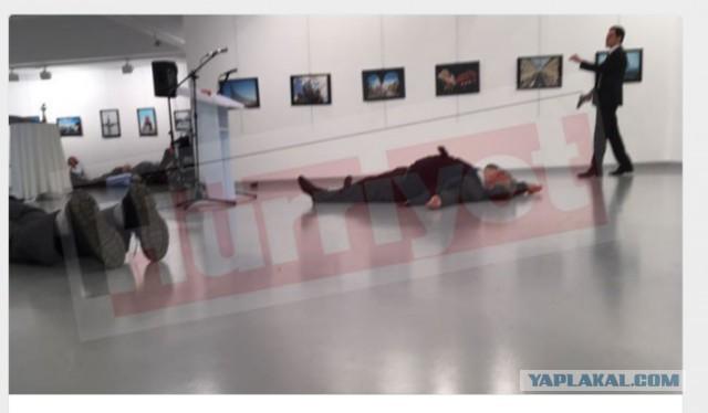 http://s00.yaplakal.com/pics/pics_preview/8/0/5/8935508.jpg