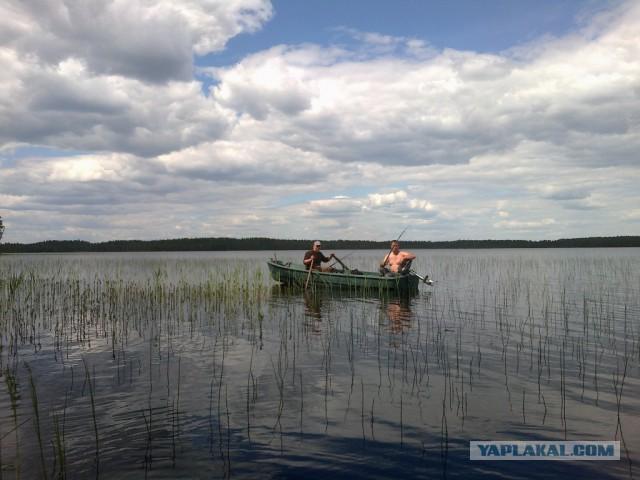 рыбалка на глухом лесном озере видео