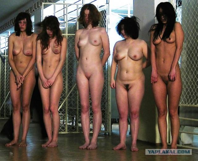 Тюрьма голые бабы фото 8685 фотография