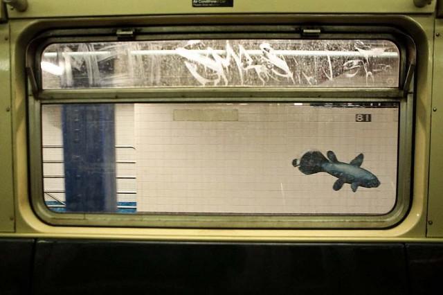 Метро Нью-Йорка: 1000 км, 468 станций, 106 лет