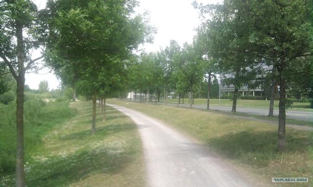 Прогулка без машины #2